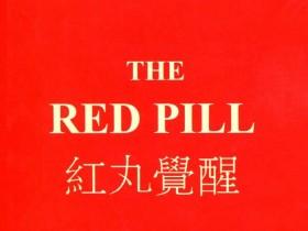 柯李思Chris《红丸觉醒1.0》PDF电子书网盘下载