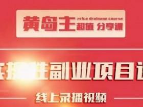 副业项目《小红书副业实操项目》教程网盘下载