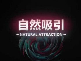 瑞恩原创社交《自然吸引》10节高级课完整版