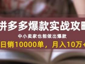 拼多多爆款实战攻略:日销10000单月入10w+