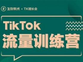 《TikTok流量增长训练营》视频课程