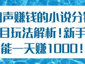 新手副业教程《暴利小说分销玩法解析 日入1000+》视频教程
