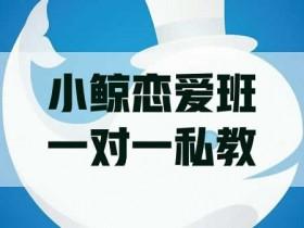 小鲸恋爱班《一对一私教》视频教程