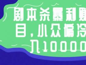 副业项目《剧本杀暴利赚钱项目,小众偏冷门月入10000+》视频教程