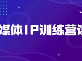 自媒体项目《自媒体IP训练营课程》视频教程