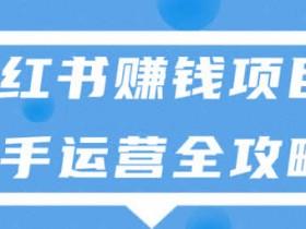 自媒体项目《小红书赚钱项目,新手运营全攻略》视频教程