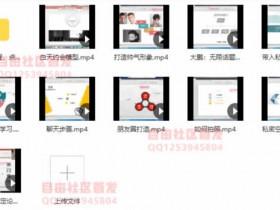 指南针团队《大鹏私教》视频教程