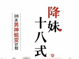恋爱书籍《降妹十八式》PDF电子书