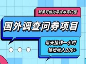 副业项目《零基础零门槛国外问卷调查项目,每天一小时收入200+》视频教程