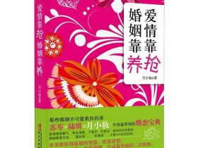 恋爱书籍《爱情靠抢,婚姻靠养》PDF电子书