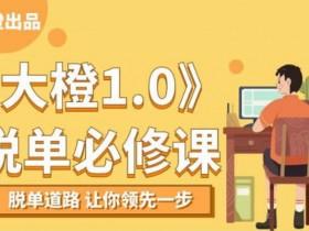 脱单必修课《大橙1.0》视频教程