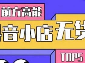 电商运营《抖音小店无货源爆款玩法》视频教程