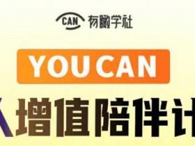 自媒体教程《YOUCAN个人增值陪伴计划》视频教程