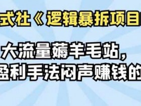 自媒体《大流量薅羊毛站,多种盈利手法闷声赚钱的网站》视频教程