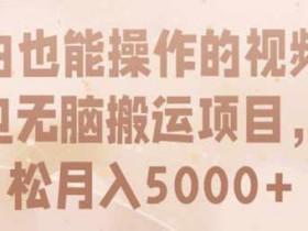 副业项目《短视频无脑搬运项目,小白也能轻松月入5000+》视频教程