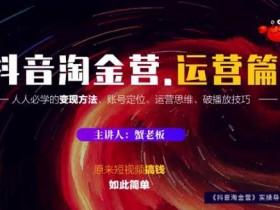 短视频副业《抖音淘金营 运营篇》视频教程