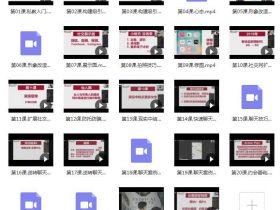 浪ji情感《麦坤私教3.0》视频课程